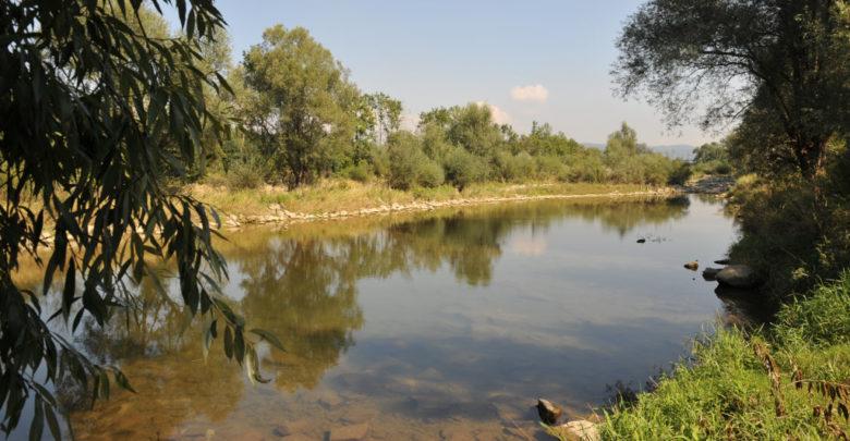 Traun Donau-Auen